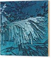 Frost Needles 2 Wood Print