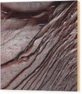Frost On Martian Dunes Wood Print