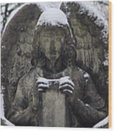 Frosted Stone Angel Wood Print