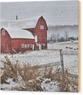 Frosted Hay Bales Wood Print