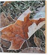 Frosted Leafs Wood Print