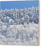 Frosted Mountainside Wood Print
