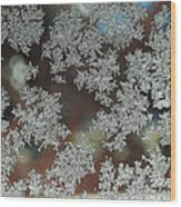 Frosted Window Wood Print