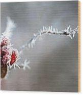 Frosty Berries Wood Print