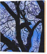 Frosty Blue Abstract Wood Print