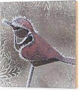 Frosty Cardinal Wood Print