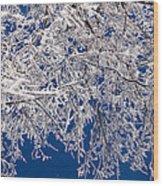 Frosty February Morning Wood Print