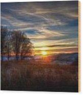 Frosty Grasses Wood Print
