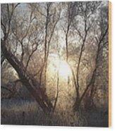 Frosty Morn Wood Print