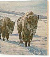 Frosty Morning - Buffalo Wood Print