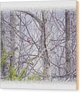 Frosty Morning Song Wood Print