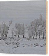 Frosty Morning Tree Line Wood Print