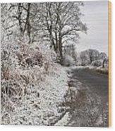 Frosty Road Wood Print