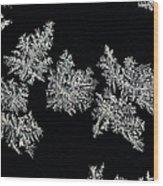 Frosty Snowflakes Wood Print