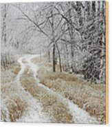 Frosty Trail 2 Wood Print