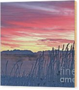 Frosty Winter Sunrise Wood Print
