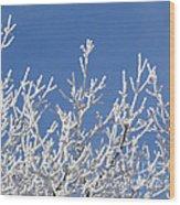 Frosty Winter Wonderland 01 Wood Print