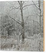 Frosty Wonderland Wood Print
