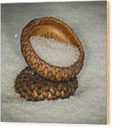 Frozen Acorn Cupule Wood Print