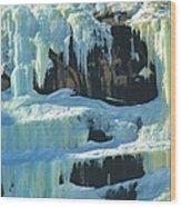 Frozen Artwork Wood Print