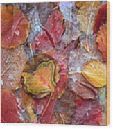 Frozen Autumn Aspen Leaves Wood Print
