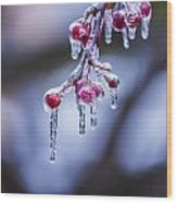 Frozen Berries Wood Print