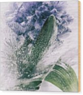 Frozen Blue Wood Print