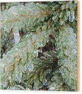 Frozen Boughs Wood Print