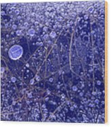 Frozen Bubbles In The Merced River Yellowstone Natioinal Park Wood Print