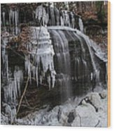 Frozen Buttermilk Falls Wood Print by Anthony Thomas