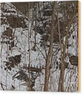 Frozen Dam Wood Print