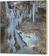 Frozen Eden Wood Print