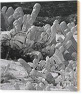 Frozen Falls Tundra Fingers Wood Print