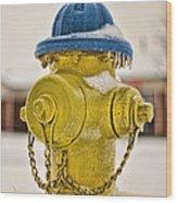 Frozen Fire Hydrant Wood Print