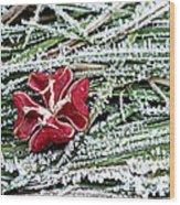Frozen Flower Wood Print