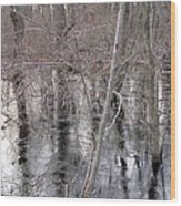 Frozen Forest Floor Wood Print