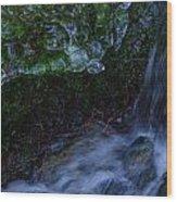 Frozen Garden Stream Wood Print