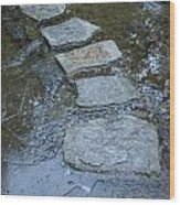 Slippery Stone Path Wood Print