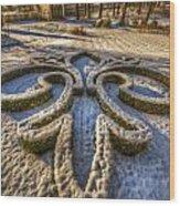 Frozen Garden  Wood Print