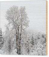 Frozen Giant Wood Print