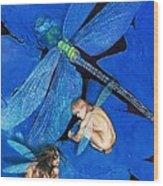 Frozen In Flight  @ Ariesartist.com Wood Print