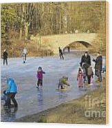 Frozen Lake Krefeld Germany Wood Print by David Davies