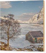 Frozen Lake Ogwen Wood Print