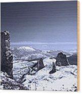 Frozen Landscape Wood Print