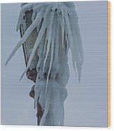 Frozen Lantern At The Falls Wood Print