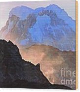 Frozen - Torres Del Paine National Park Wood Print