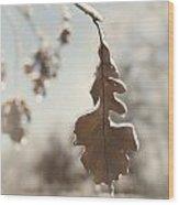 Frozen Oak Leaf Abstract Nature Detail Wood Print