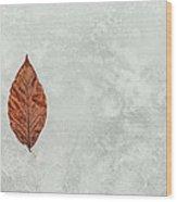 Frozen Seasons Wood Print