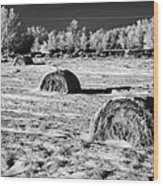 frozen snow covered hay bales in a field Forget Saskatchewan Canada Wood Print