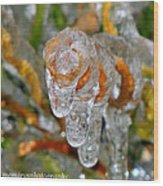 Frozen Spiral Wood Print